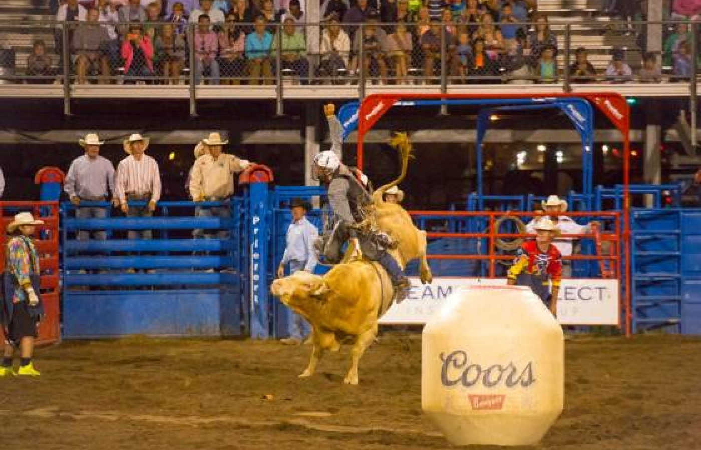 From July 2 through August 28, every Friday and Saturday means the Steamboat Pro Rodeo Series at the Brent Romick Arena