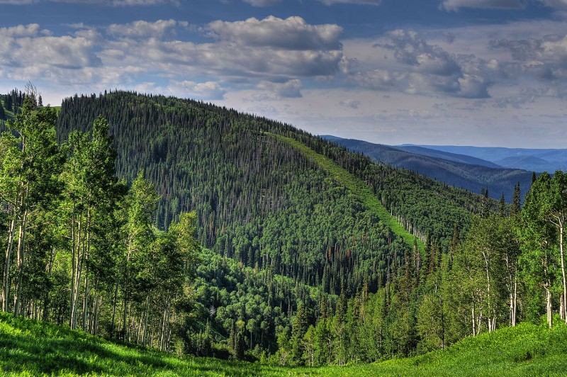 Enjoy your Colorado summer at Steamboat Resort, which opens for the season on June 21, 2021.